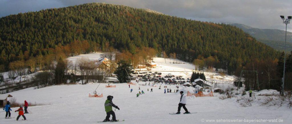 Skigebiet Eck Riedelstein Skifahren bei Arrach und Arnbruck