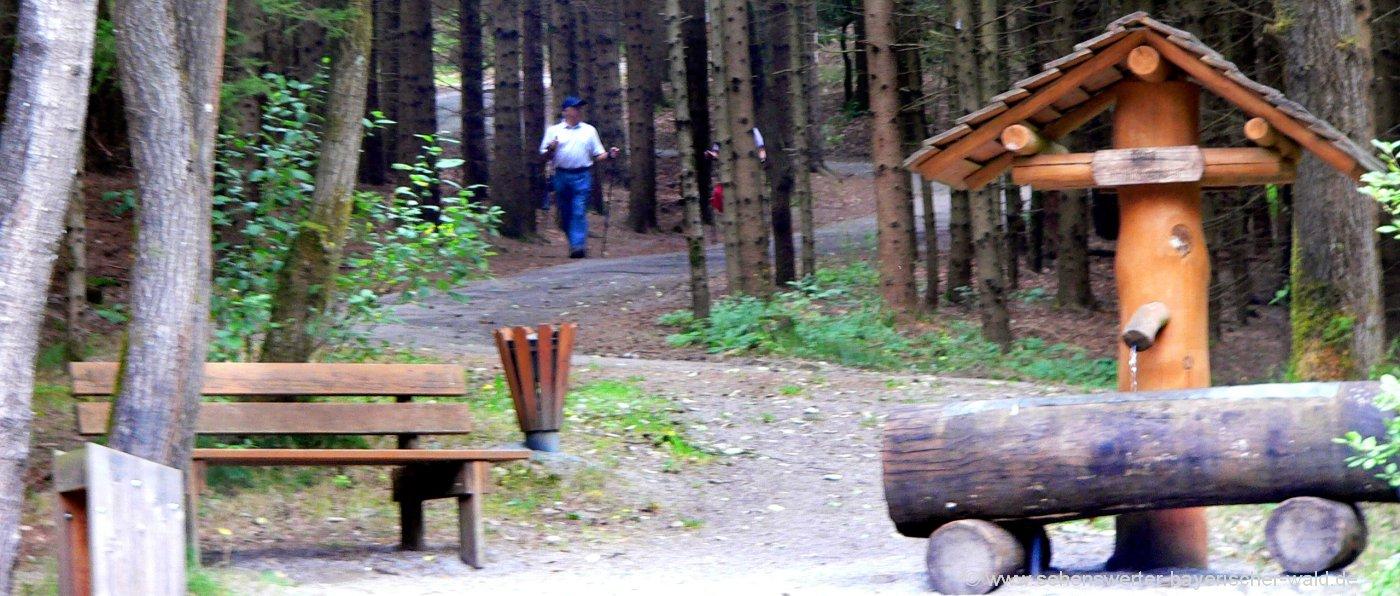 Waldlehrpfad bei Eging am See - Themenwanderweg Spurensuche in Niederbayern