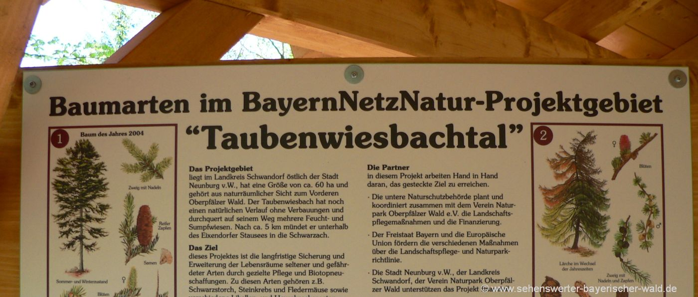 Wandern am Naturerlebispfad im Oberpfälzer Wald