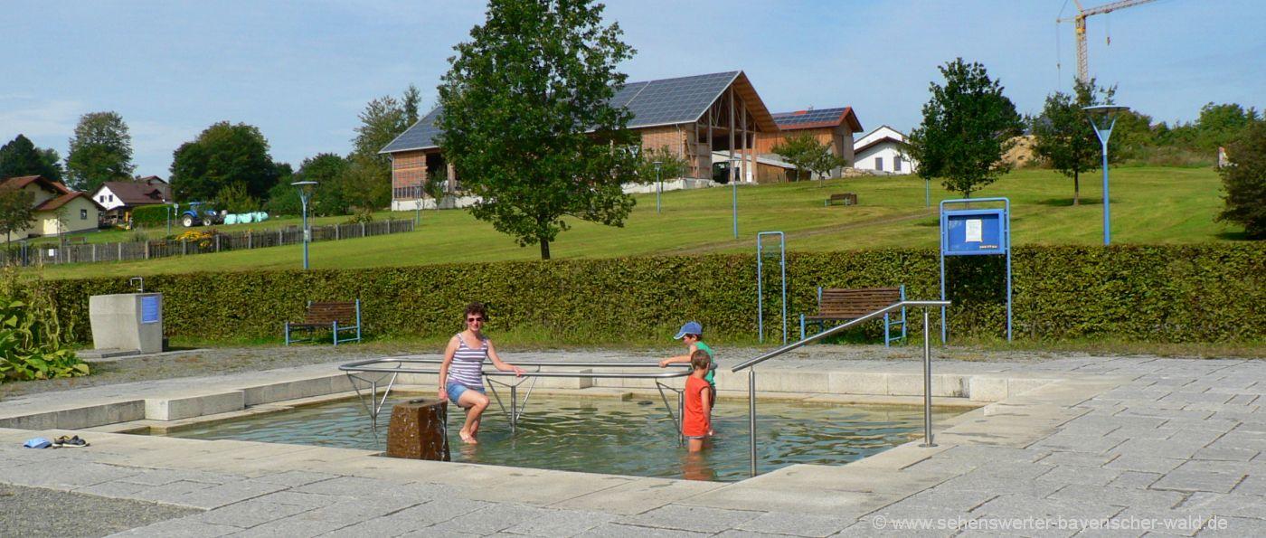 erlauzwieseler-see-kurpark-wassertreten-kneipp-rundweg