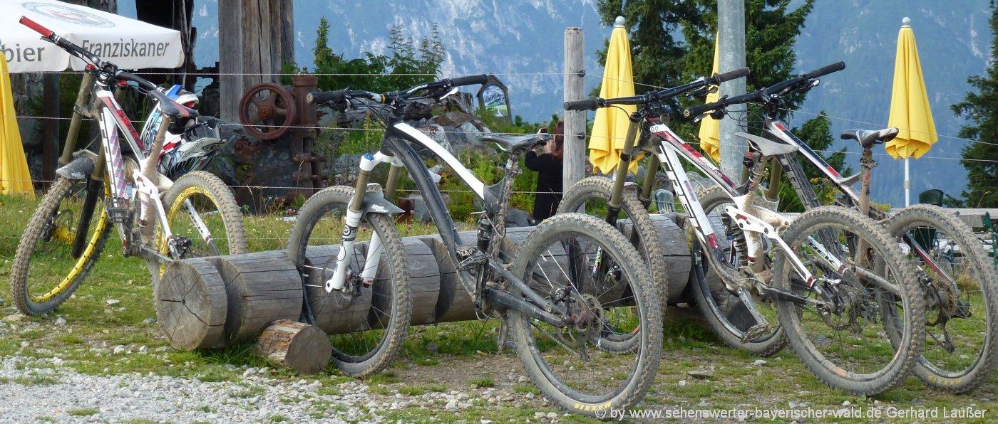 Aktivurlaub im Sporthotel Bayerischer Wald Mountainbike Touren in Bayern