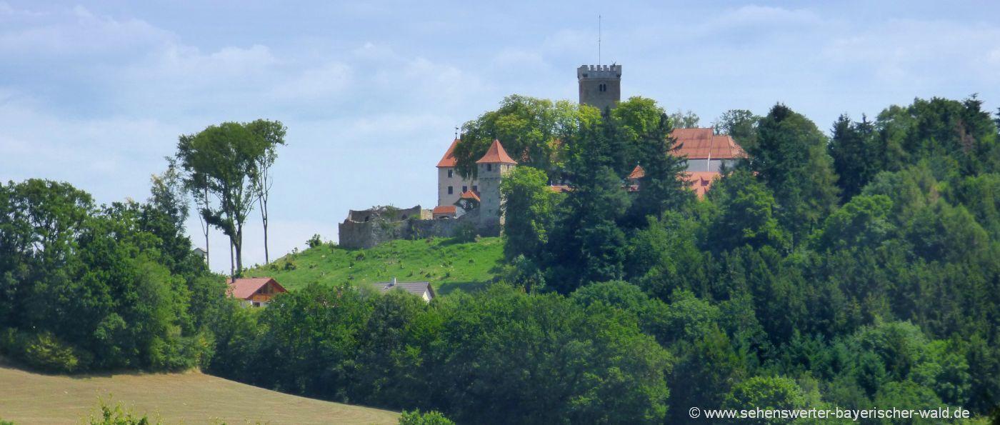 falkenfels-burg-landkreis-straubing-bogen-niederbayern