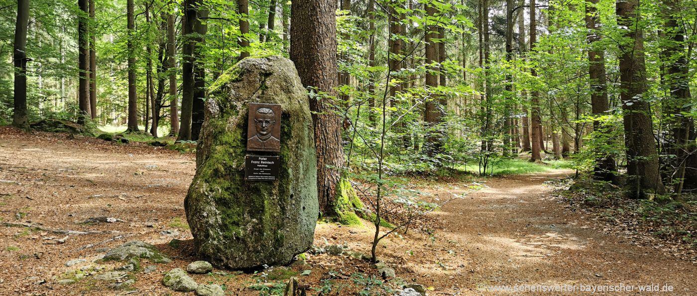 falkenstein-kloster-hofstetten-vinzenz-pallotti-rundweg