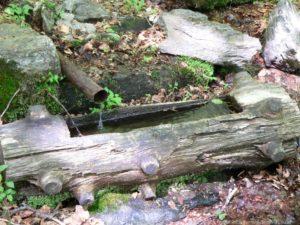 falkenstein-nationalpark-wasserquelle-holzbrunnen-800