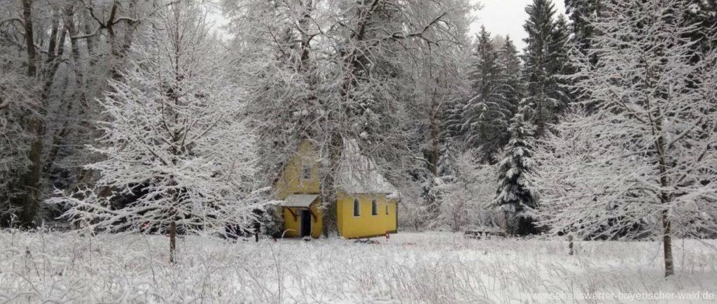 Winterwanderung Falkenstein zur Tannerlkapelle verschneiter Wald