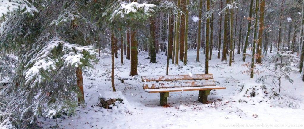 Winter Wanderwege in Falkenstein Rundweg zum Tannerl