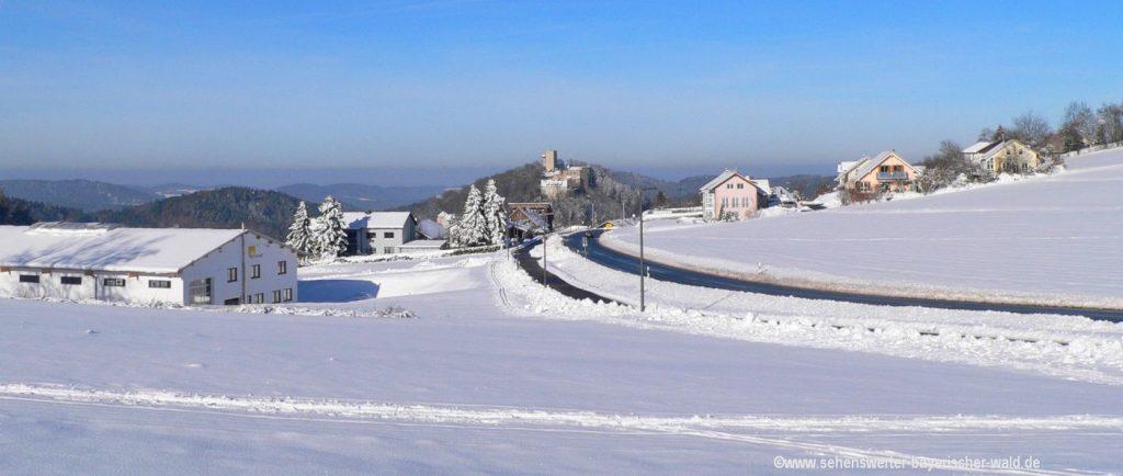 Bayerischer Wald Auto Reise planen Tipps und Infos