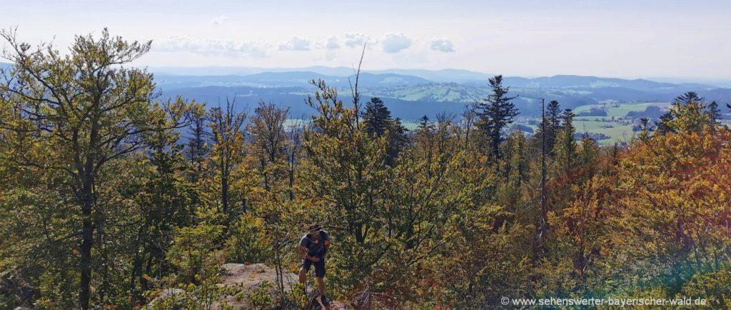 Aussichtspunkt Große Kanzel Aussichtsfelsen Bayerischer Wald