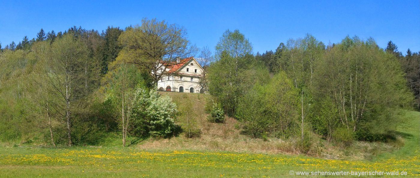 Ferienhaus Bayerischer Wald Unterkunft Urlaub Übernachtung