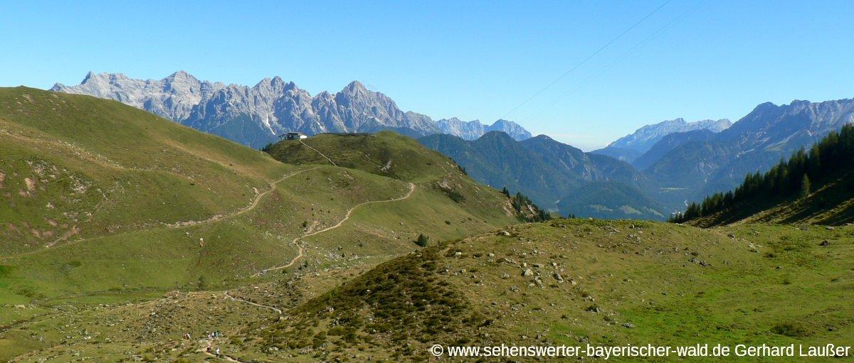 fieberbrunn-laerchfilzkogel-wanderweg-ausblick-panorama-1200