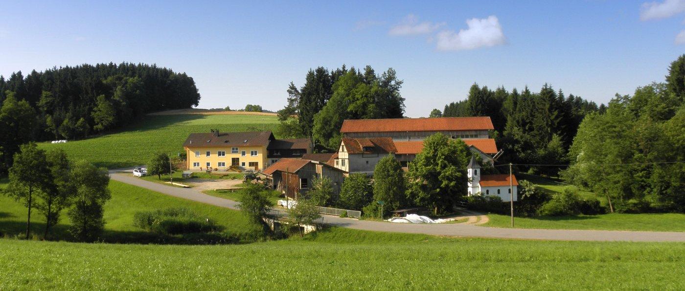 fingermühl-bayerischer-wald-famikienfreundlicher-bauernhofurlaub-ansicht