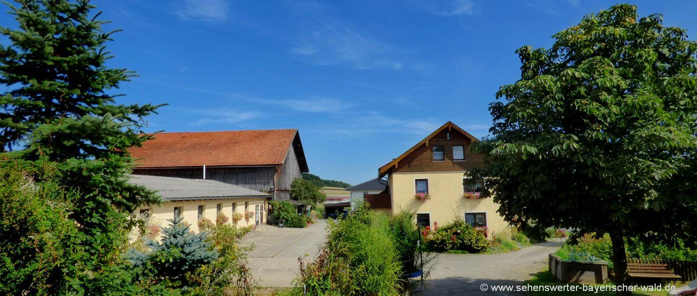 fischer-bauernhof-cham-oberpfalz-ferienhaus