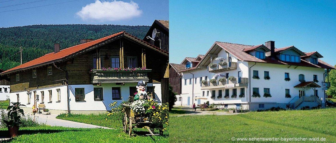 forellenpension-bayerischer-wald-mit-sauna-wlan-bauernhaus