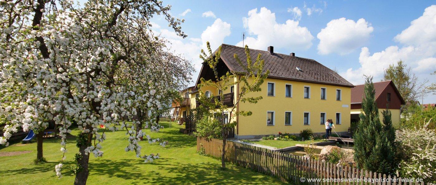 frank-ferienwohnungen-bauernhofurlaub-tirschenreuth-oberpfalz