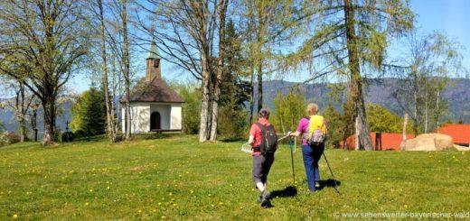 frath-wanderweg-böbrach-landkreis-regen-kapelle