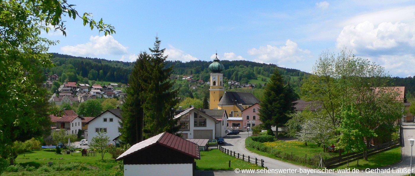 frauenau-ferienort-bayerischer-wald-ausflugsziele-pfarrkirche-panorama-1400
