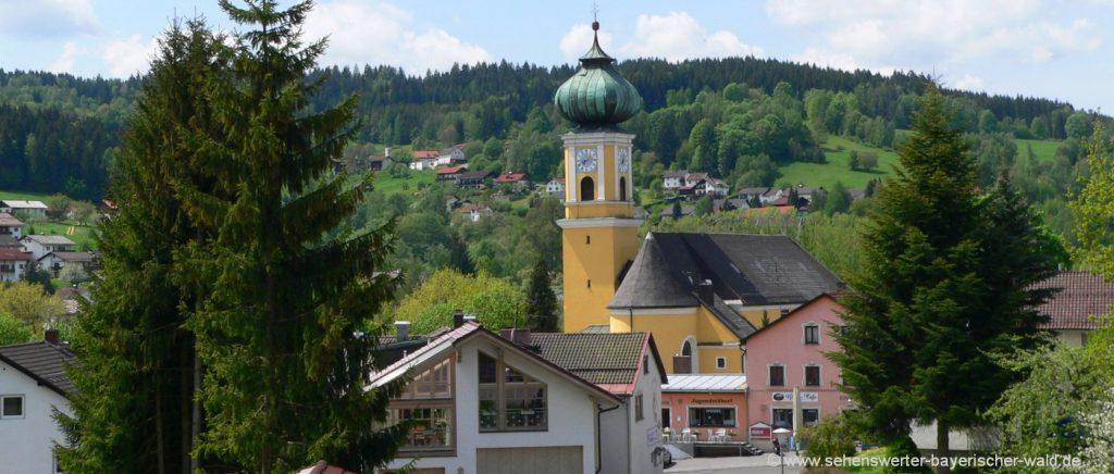 Bayerischer Wald Ferienort Frauenau Wandern & Rundwege