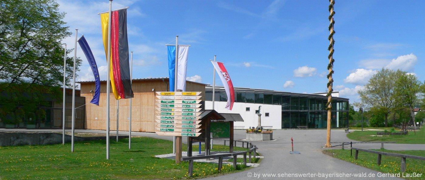 frauenau-glasmuseum-bayerischer-wald-freizeitangebote-landkreis-regen