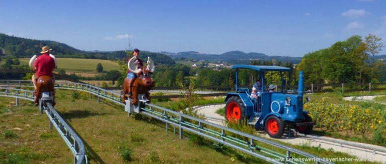 freizeitangebote-bayerischer-wald-kinder-freizeitaktivitäten-familienausflug