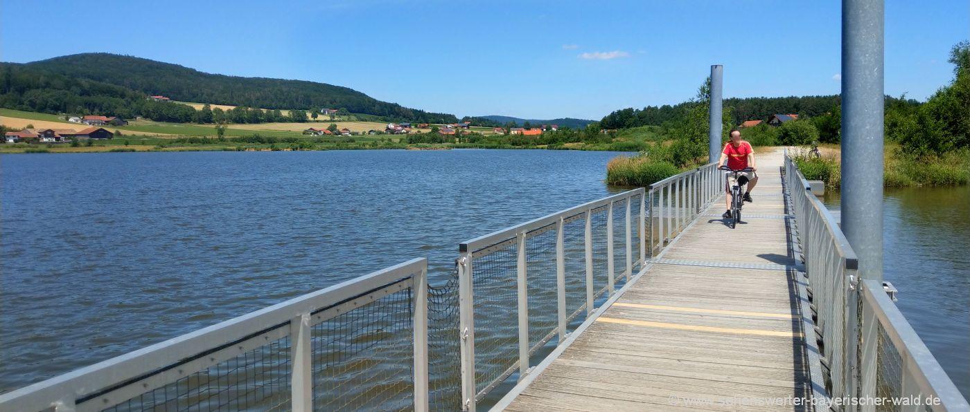 Rundweg Drachensee Furth im Wald Rundwanderweg am See