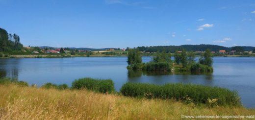 furth-im-wald-drachensee-rundweg-am-wasser