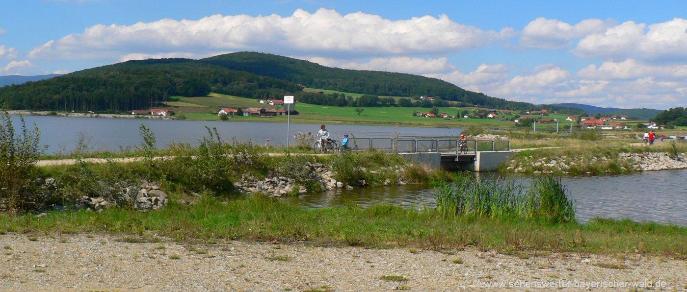 furth-im-wald-drachensee-rundweg-see-radweg-wasser
