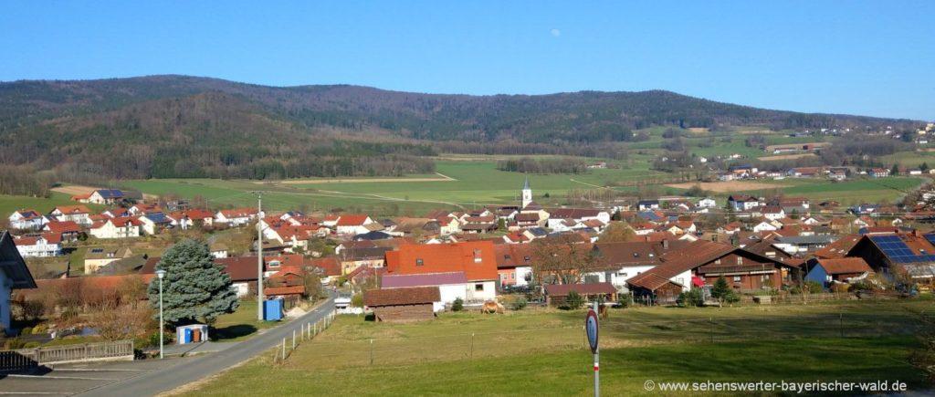 Geissenberg Ausgangspunkt der Wanderung zum Kathlfelsen & Arberblick