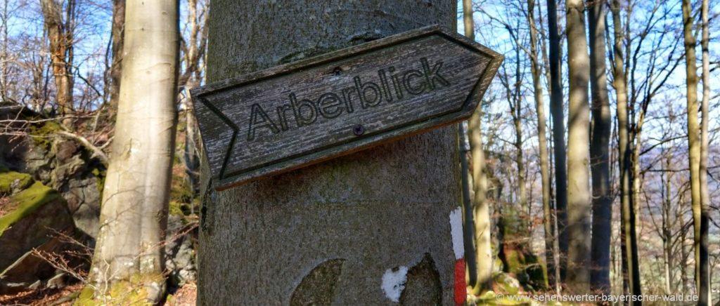 Gleissenberg Arberblick Wanderung ab Geigant oder Eschlmais
