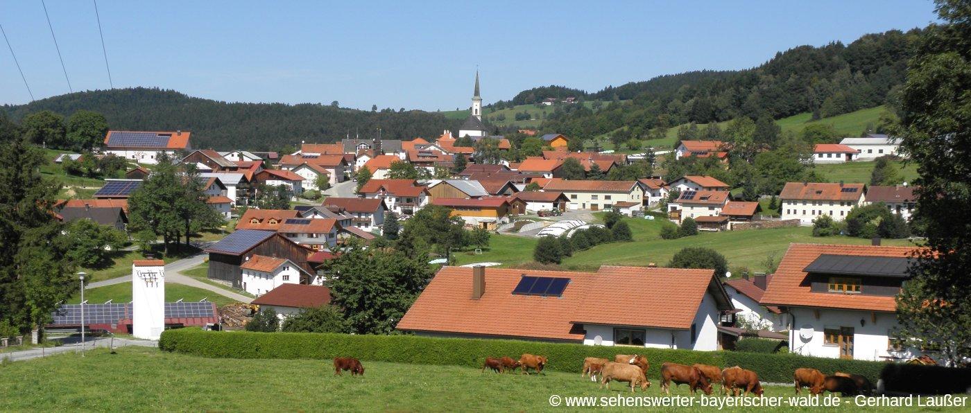 grainet-bergdorf-bayerischer-wald-dorfansicht-panorama-