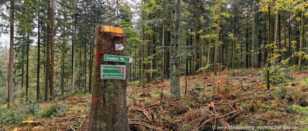 Rundwanderweg zum Hirschenstein & Schuhfleck Kloster Kostens Schuhfleck