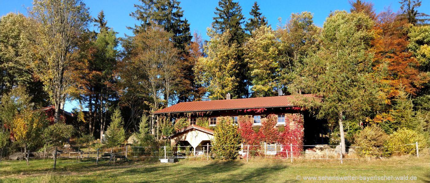 gruppenunterkunft-bayerischer-wald-ferienhütten-bayern-chalets