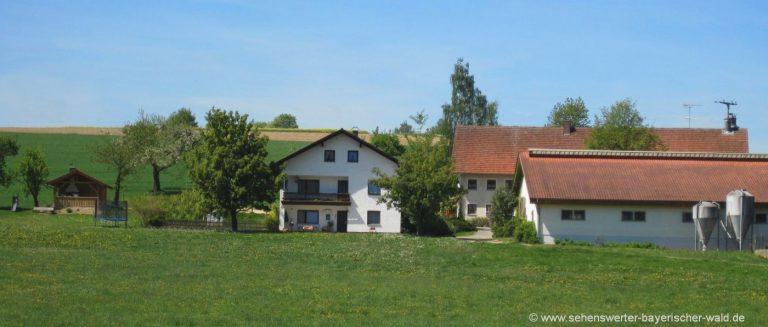 gschwandnerhof-bauernhofurlaub-michelsneukircheen-ferienhaus