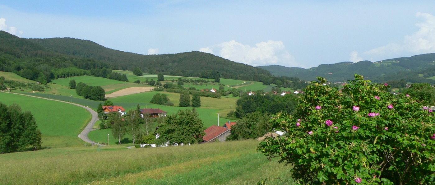 Wanderungen in Lalling Wandern im Lallinger Winkel in Niederbayern