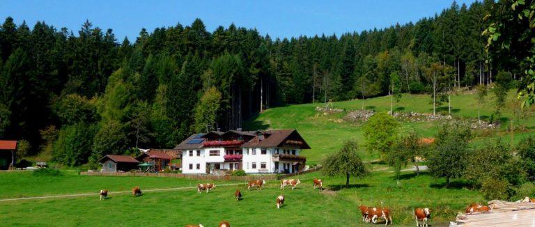 hacker-patersdorf-bergpension-bayerischer-wald-familienpension-bayern-ansicht