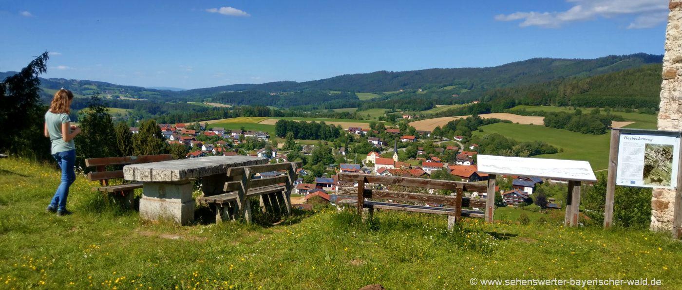 Aussichtspunkt bei Haibach Burg & Schloss Ruine mit Aussicht