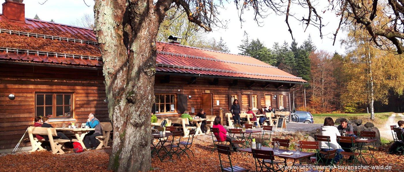 haidstein-wandern-berghütte-cham-ausflugslokal-herbsturlaub