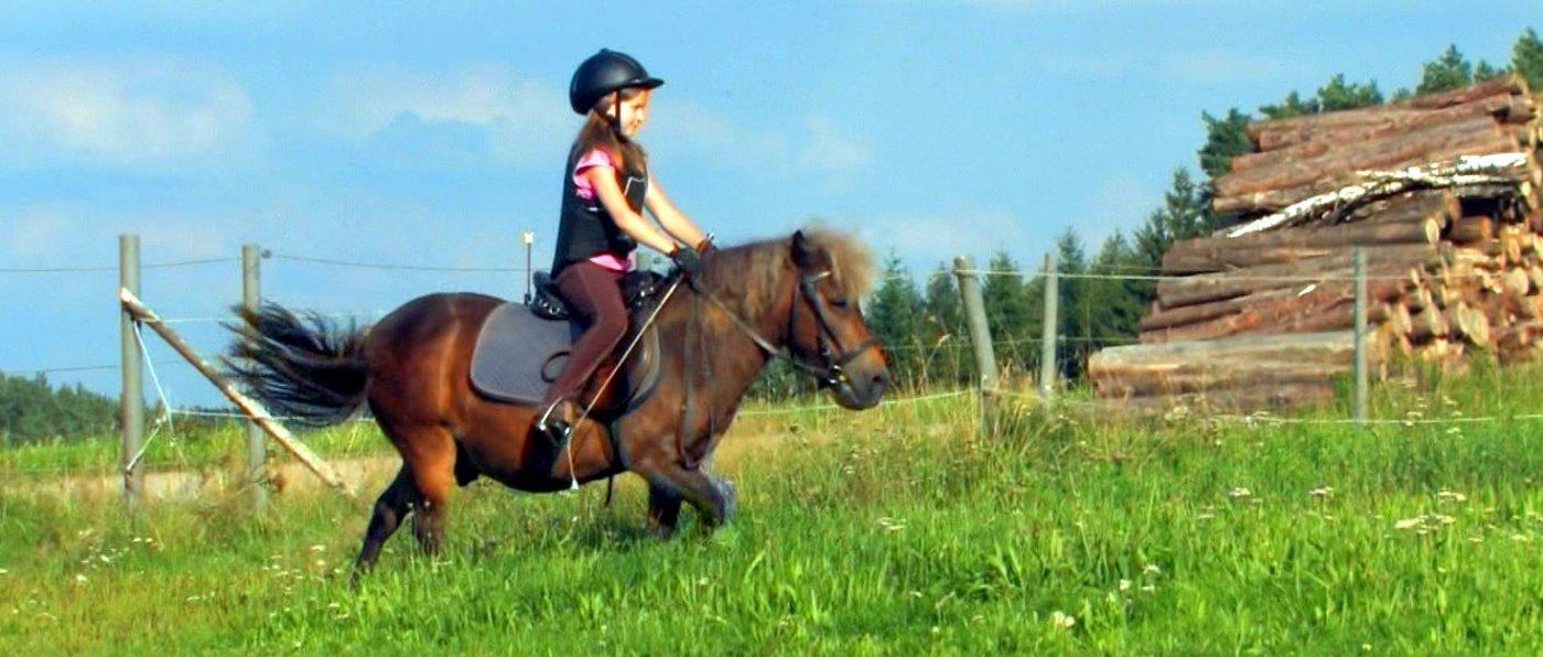 Bayern Ponyreiten am Kinder Bauernhof mit Pferden