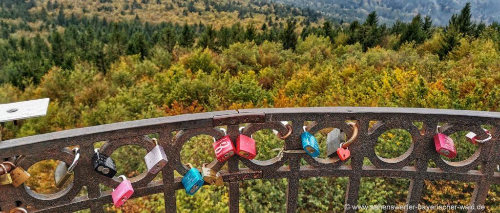 Rundweg zum Hirschenstein Aussichtsturm in Niederbayern