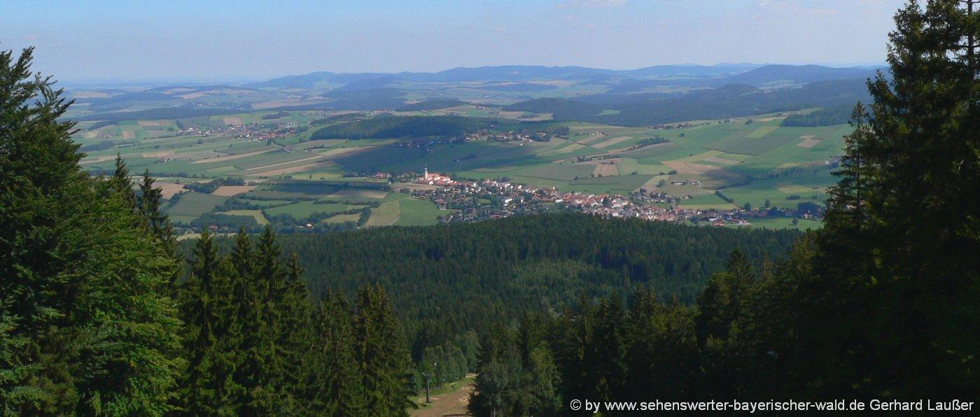 hohen-bogen-berg-wandern-neukirchen-heiligen-blut-aussichtspunkt