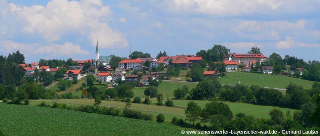 Ortsansicht von Hohenau mit Kirche - Sehenswürdigkeiten und Freizeitangebote