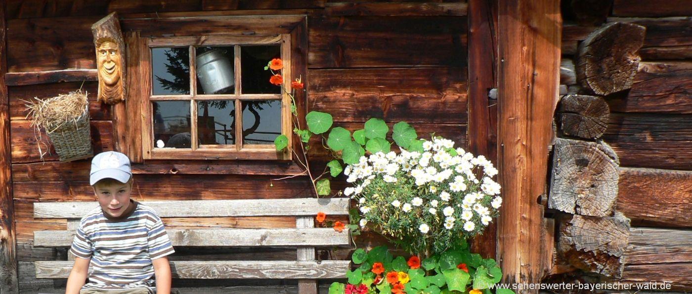 hüttenurlaub-bayern-almhütten-bayerischer-wald-berghütten