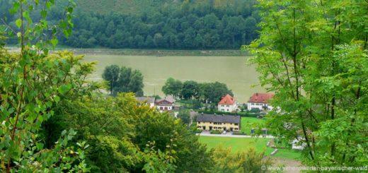 jochenstein-naturschutzgebiet-donauleiten-schmugglerweg-wandern