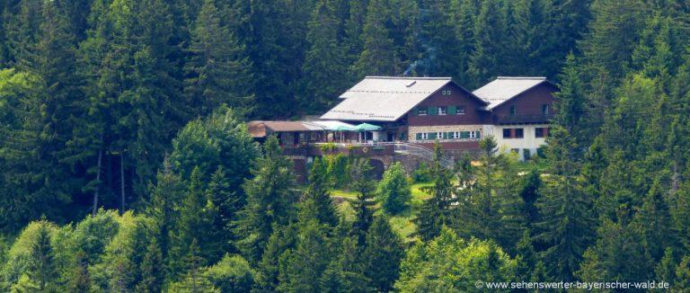 Berghütte am kaitersberg-ausgangspunkt-wanderung-kötztinger-hütte