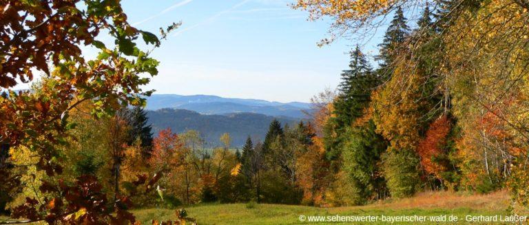 kaitersberg-bad-koetzting-wandern-herbsturlaub-panorama-1400