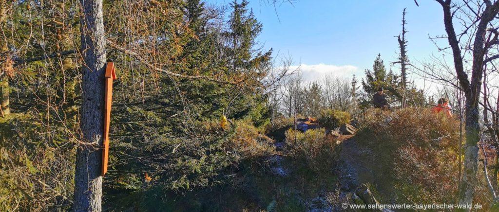 Berggipfel Rauher Kulm in Niederbayern Rundweg Wanderung
