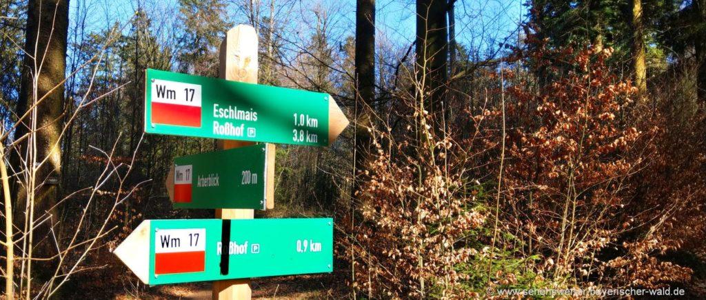 katzbach-wanderwege-eschlmais-rundweg-wm17-rosshof-arberblick