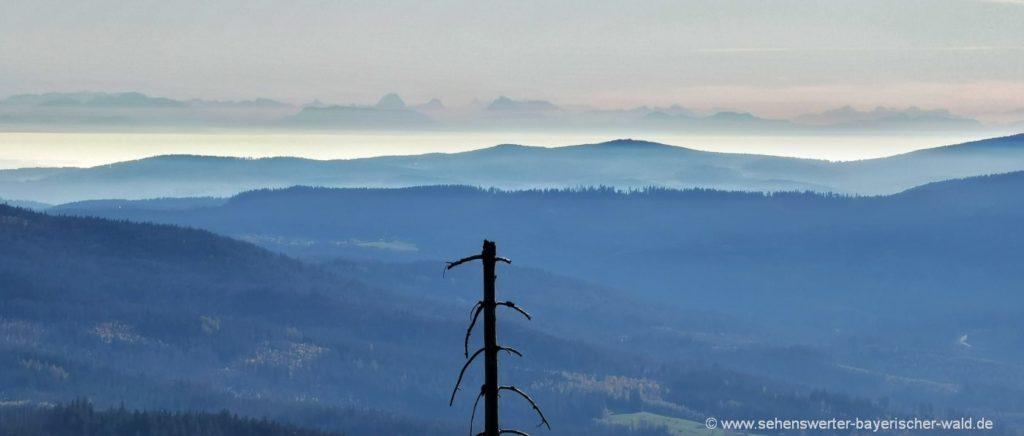 Alpenblick vom Bayerischen Wald aus