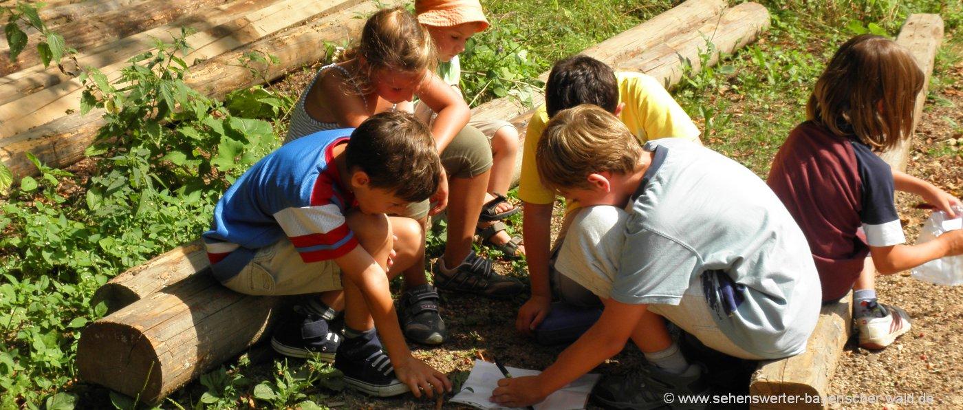 Ferien am Bauernhof für Kinder Bauernhofurlaub in Bayern