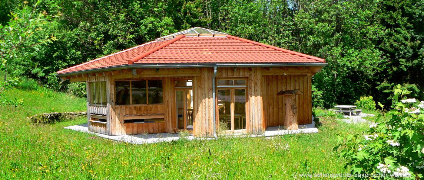 kirchberg-im-wald-ausflugsziele-haus-der-bienen-bienenhaus