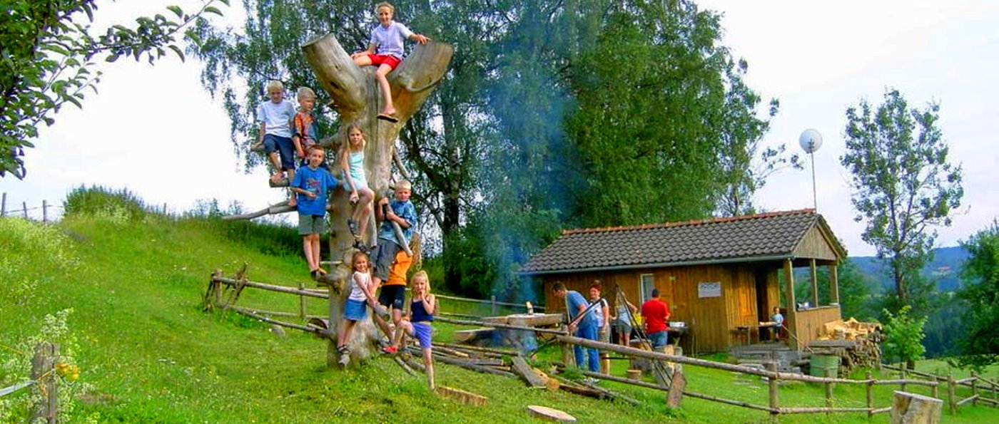 Erlebnisreicher und behindertengerechter Bauernhofurlaub im Bayerischen Wald